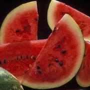Биотопливо из арбуза