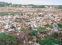 Возможно в Днепродзержинске удастся решить проблему городских свалок, если завод по переработке ТБО будет все-таки построен...