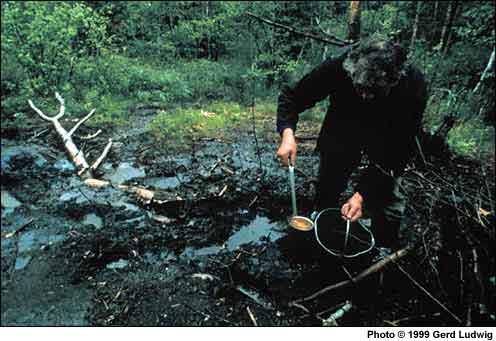 Пример загрязнения грунтов керосином (фото Gerd Ludwig)