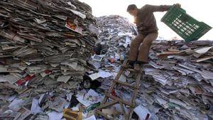 Тысячи тонн бумажной прессы смогут быть полезны